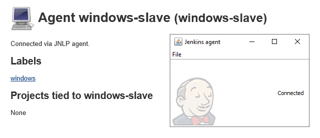 Configuring Jenkins Slaves (Linux+Windows) on AWS EC2